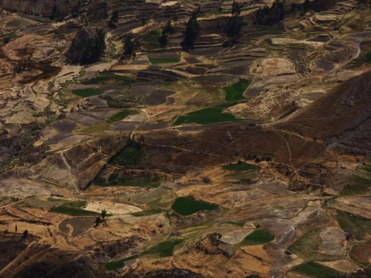 Lauferei Colca Canyon