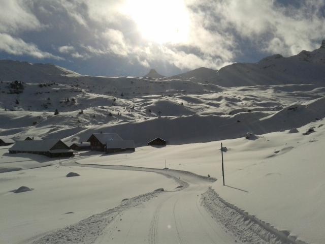 Lauferei Alp Fursch