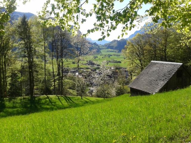 Lauferei - mein Dorf