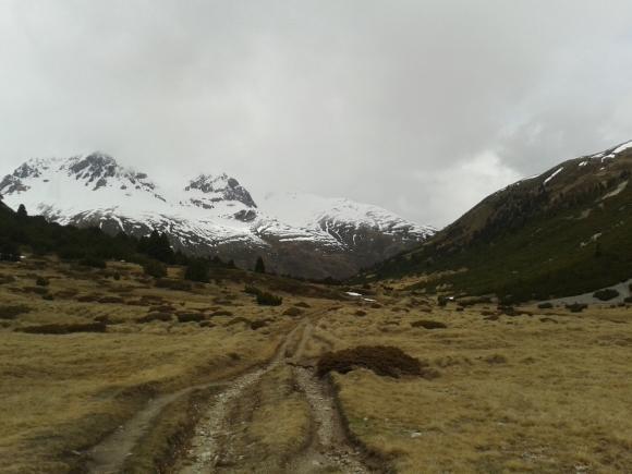 Lauferei - Blick Richtung Alp Astras und Tamangur