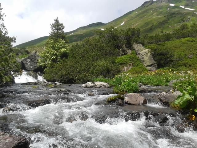 Lauferei - Bergsommer