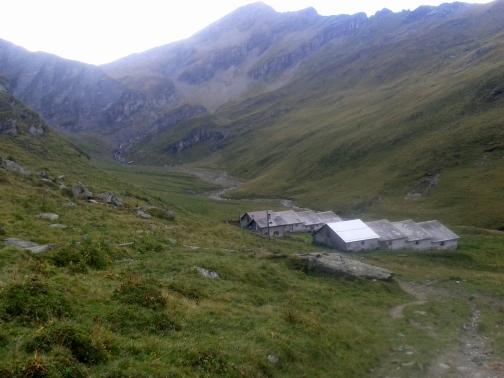 Lauferei - Alp Tomül
