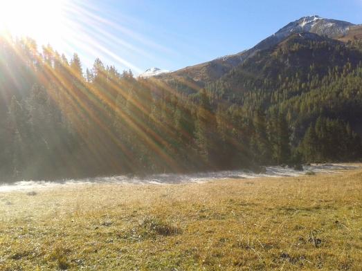 Lauferei - Nationalpark Graubünden
